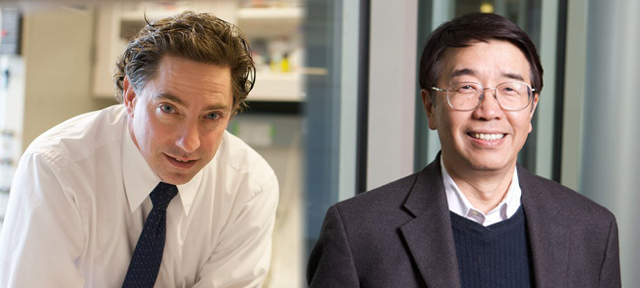 Novel drug action against solid tumors explained - Richard Bold and Hsing-Jien Kung © UC Regents