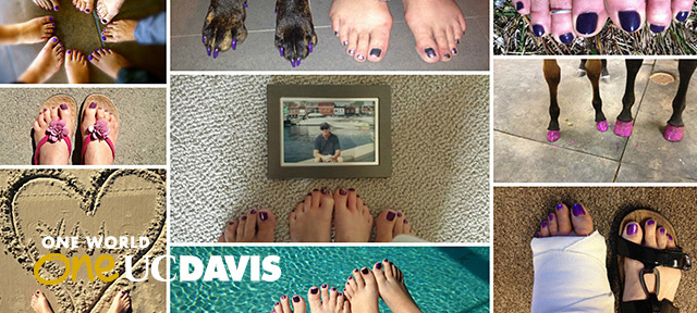 Photo collage of purple pedicures © KNTV-NBC Bay Area News