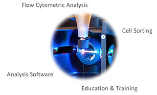 Flow Cytometry © UC Regents