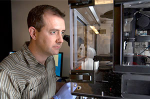 Assistant Professor Sean Collins, Department of Microbiology and Molecular Genetics