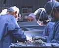 Photo of surgery © 2009 UC Regents