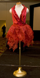 Photo of winning dress design © UC Regents