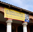 UC Davis Institute of Regenerative Cures © UC Regents