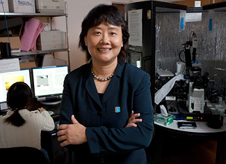 Gang-Yu Liu in her lab © UC Regents