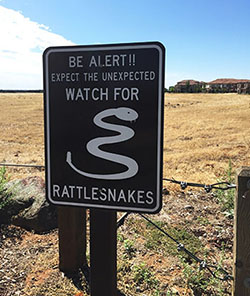Sign by grassy field alerts pedestrians to watch out for rattlesnakes to prevent snake bites
