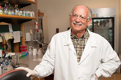 Internal Medicine Professor Jay Solnick