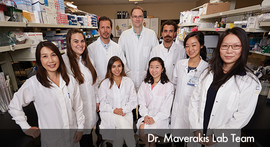 Dr Izumiya Research Lab Team