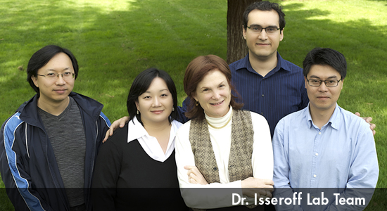 Dr Isseroff Research Lab Team