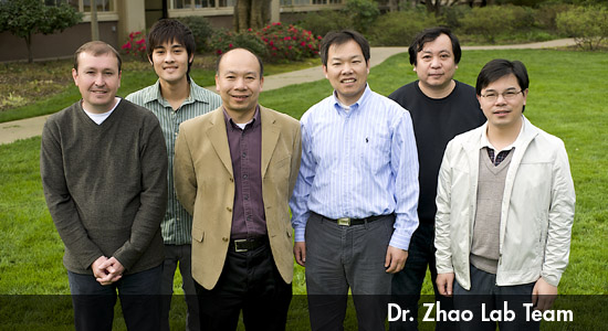 Dr Zhao Research Lab Team