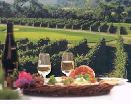 vineburg hindu singles Zip code 95487 - vineburg ca california, usa - sonoma county.