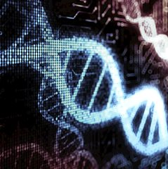 DNA genetic testing for HD