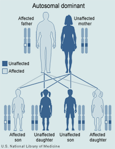 Genetics - UC Davis Huntington's Disease Center of Excellence