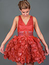 See the UC Davis Red Dress Collection © UC Regents
