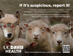 thumb nail image of poster - If it's suspicions, report it! Report suspicious emails to abuse@ucdavis.edu