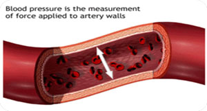 Blood pressure artery