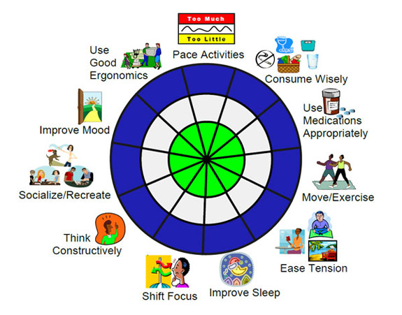 Chronic pain strategy wheel