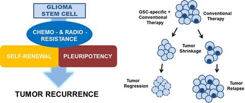GSCs and Tumor Recurrence
