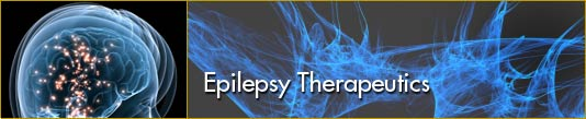 Epilepsy Therapeutics
