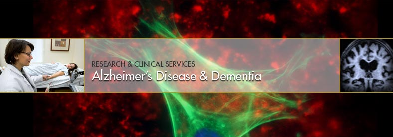 Alzheimer's Disease and Dementia subspecialty