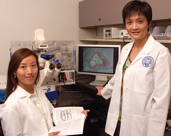 Chongxiu Sun and Sarah Yuan © UC Regents