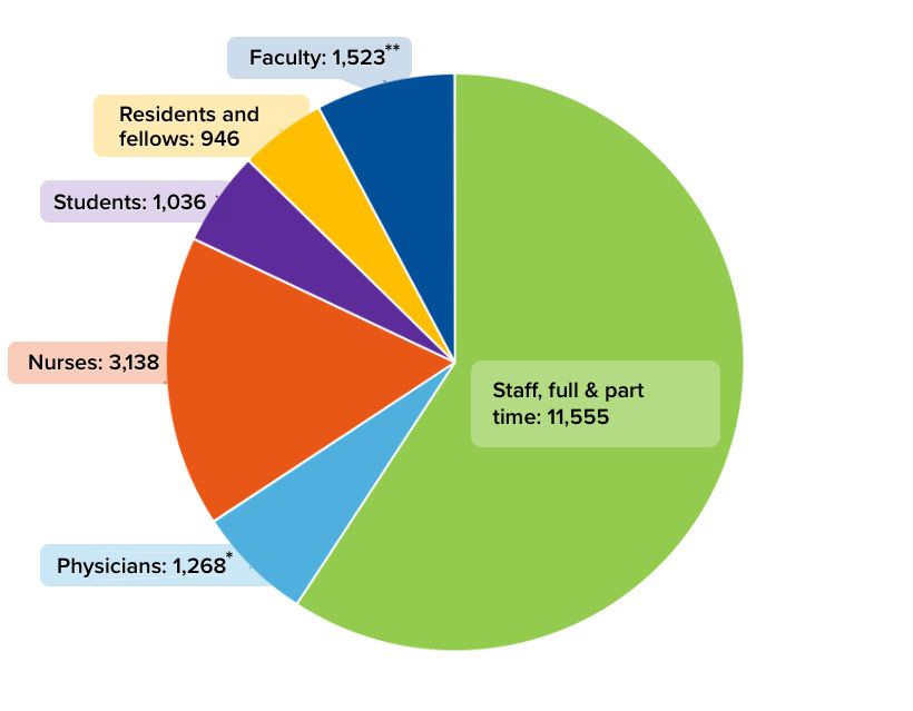 Faculty, staff and students pie chart