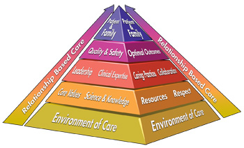 Nursing Professional Practice Model