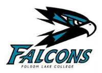 flc falcons