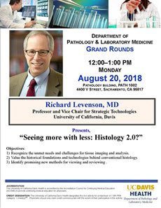 Dr. Richard Levenson grand rounds flyer
