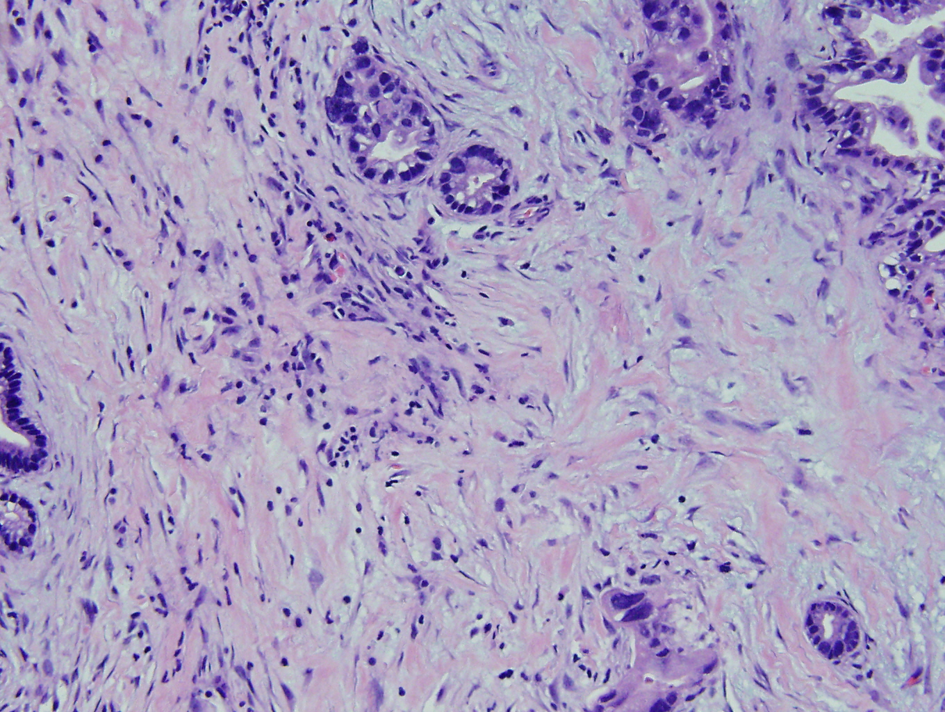 Case of the Month, Mar. 2013: Figure 3