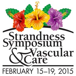 2015 Strandness Symposium Vascular Care