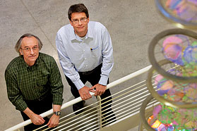 Major findings open doors in DNA repair research