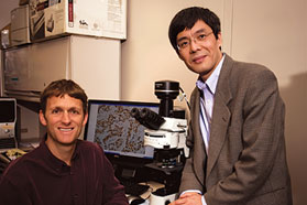 UC Davis researchers zero in on molecular targets