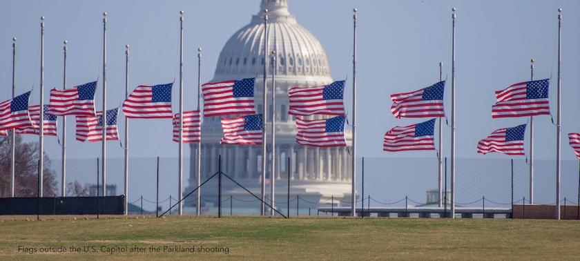 Flags fly after Parkland Shooting