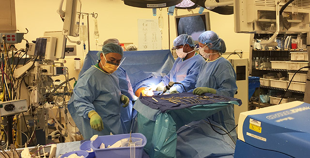 Photograph of Dr. Tom Cooke and surgery team © UC Regents