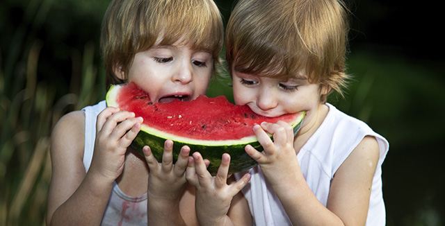 Photograph of children eating watermelon © iStockphoto