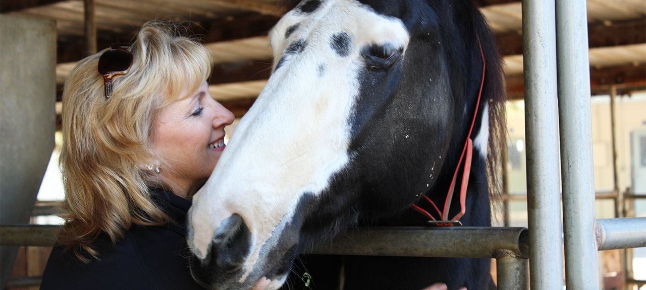 Dementia patient interacting with horse © iStock