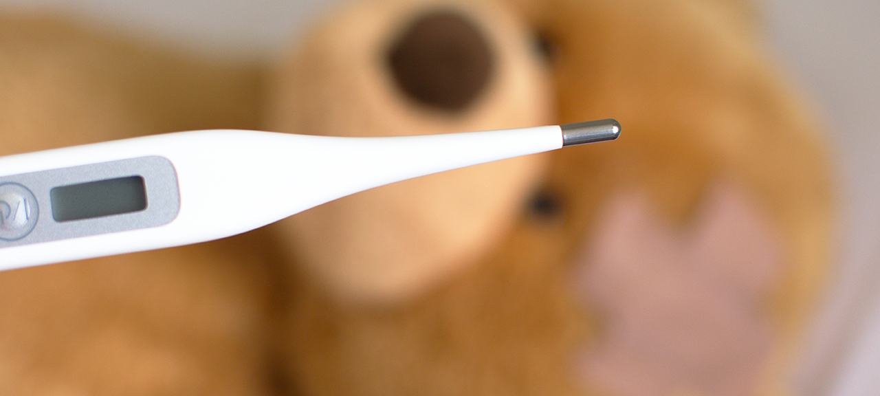 thermometer and teddy bear