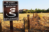 Sign by a grassy field alerts pedestrians to watch out for rattlesnakes to prevent snake bites.