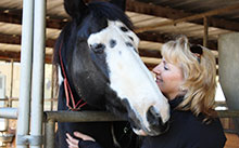 working with horse helps woman with dementia